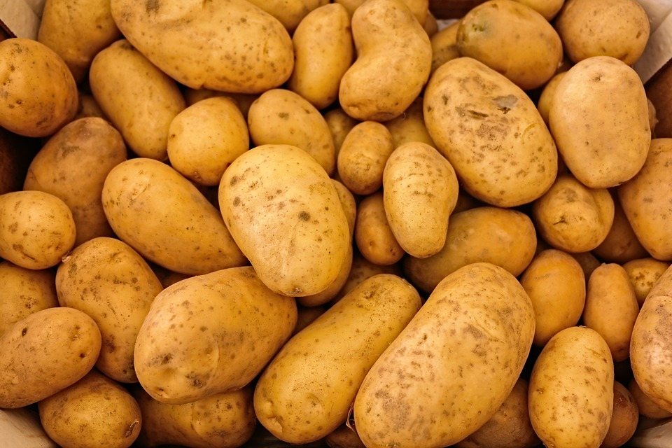 Kartoffelns