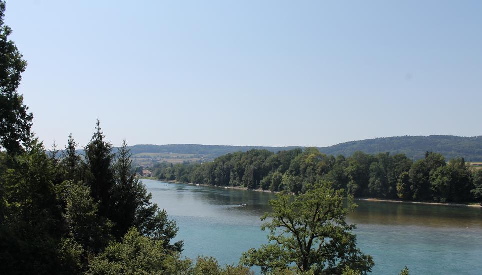 Badeunfall Rhein Heute