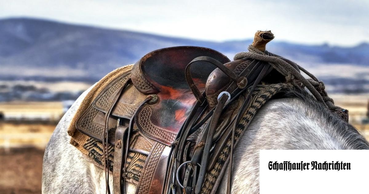 Frau Vom Pferd Schwanger